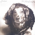 "Stringband – ""The Maple Leaf Dog"""
