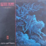 "Skinny Puppy – ""Stairs and Flowers"""