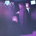 """Stevie Nicks – """"The Wild Heart"""""""